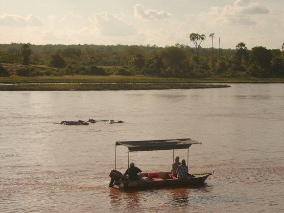 Safari Ruaha-Fluss