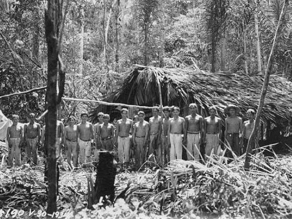 Dschungel Fordlandia