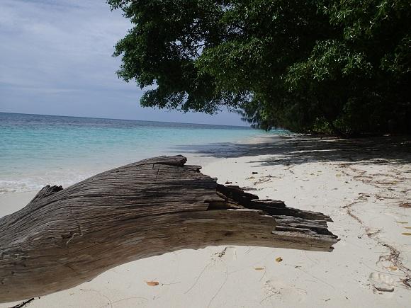 Strand Palau