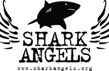 Shark Angels Logo black