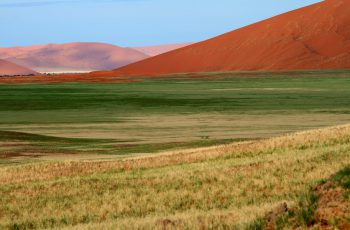 Green Season in Namibia