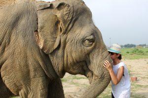 Larissa Gerlach mit einem Elefanten des SOS Agra Projekts in Indien. Bild © reisefieber-reisen GmbH