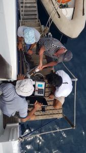 Citizen Science an Bord der Ombak Putih - Copyright: SeaTrek Sailing Adventures