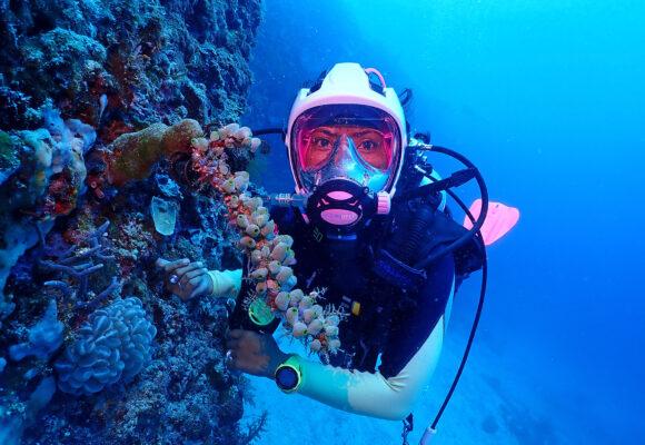 Tauchen mit Vollgesichtsmaske - Amun Ini Beach Resort